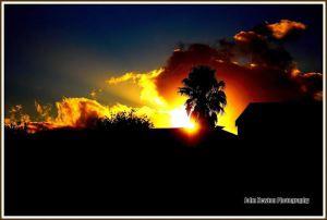 'The Sun AlsoRises'