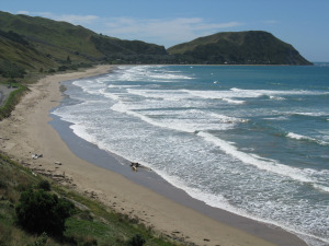 Makorori Beach: A Writer'sDream