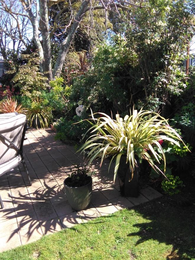 M's Garden 1.jpg