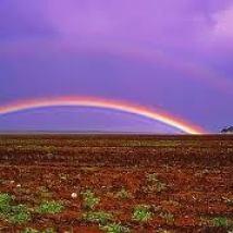 rainbow-sa-fromflick-com