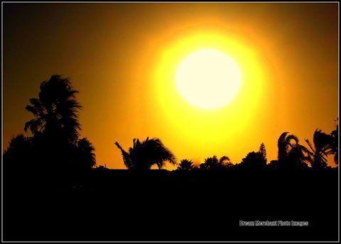 sun-beats-down111-1-2